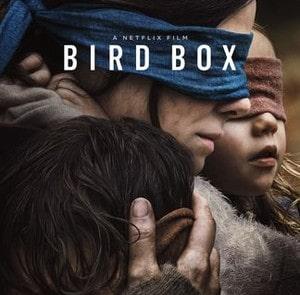 """Bird Box"" Film Poster"